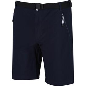 Regatta Xert III Stretch Shorts Men, niebieski